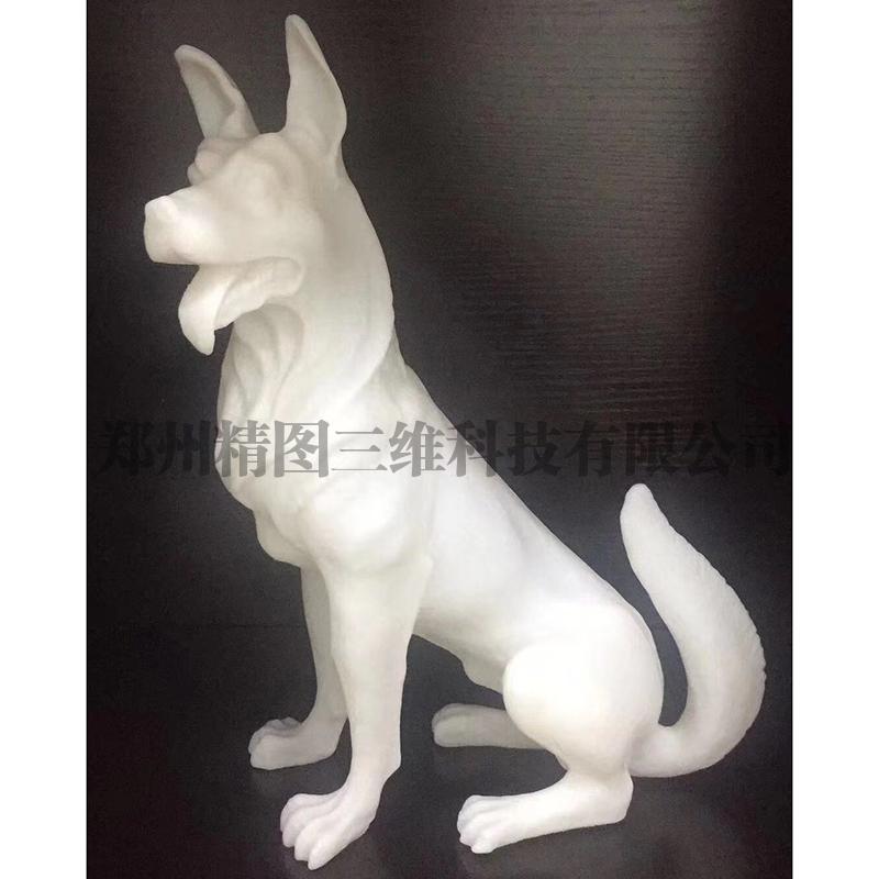 动物模型打印